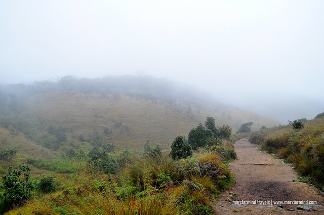 Trail at Horton Plains National Park