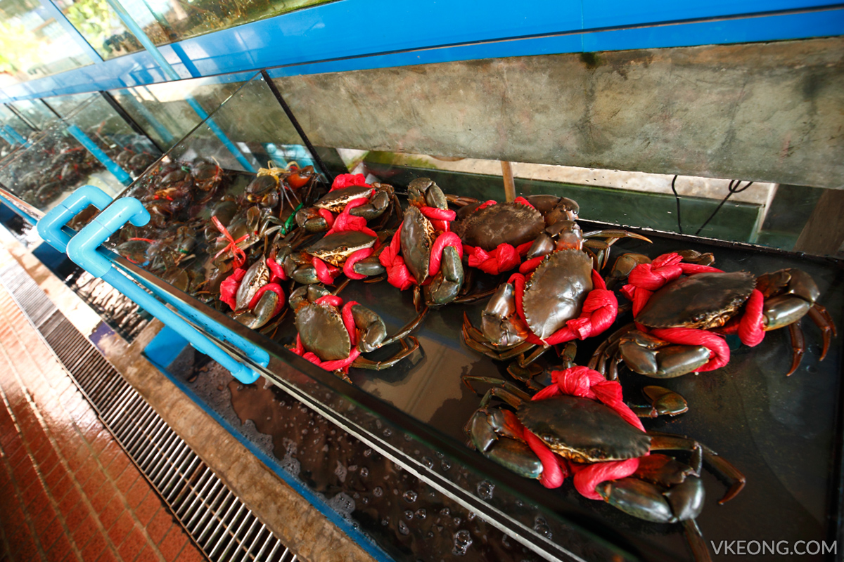 Pupen Seafood Crabs in Tanks