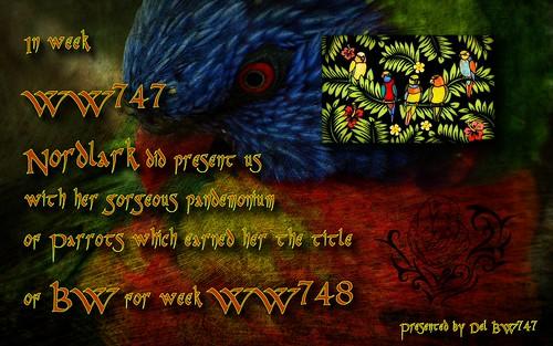WW747 Winner Certificate