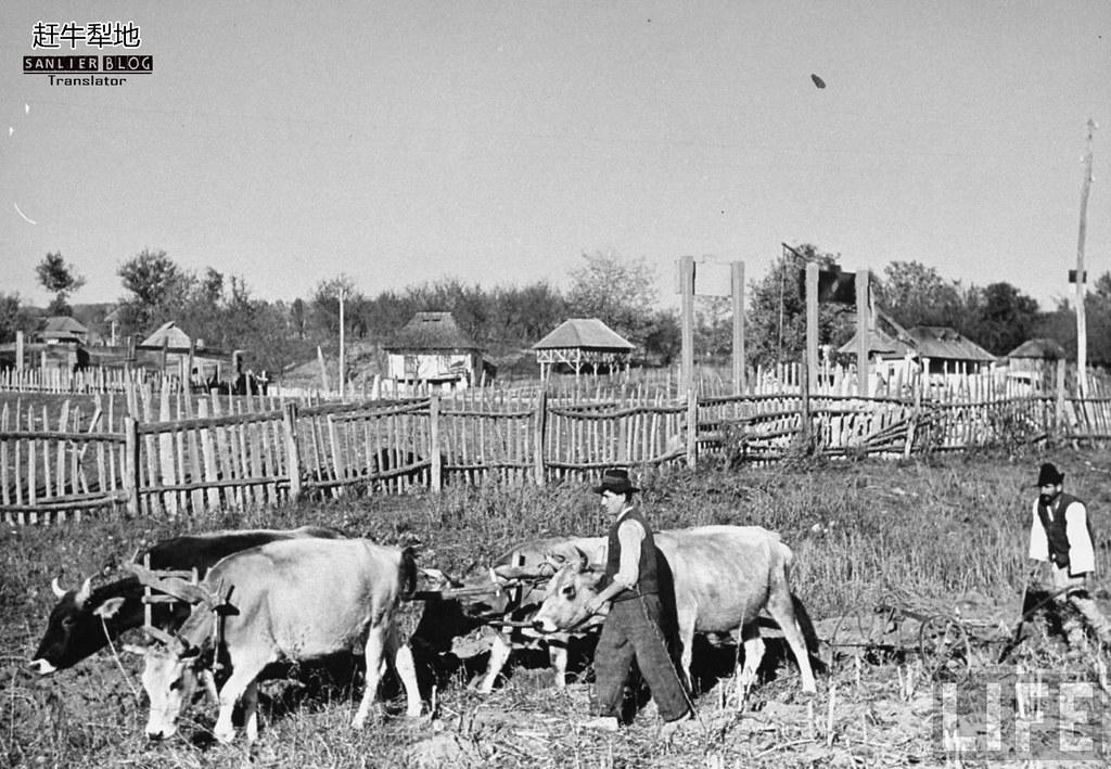 1938年罗马尼亚30
