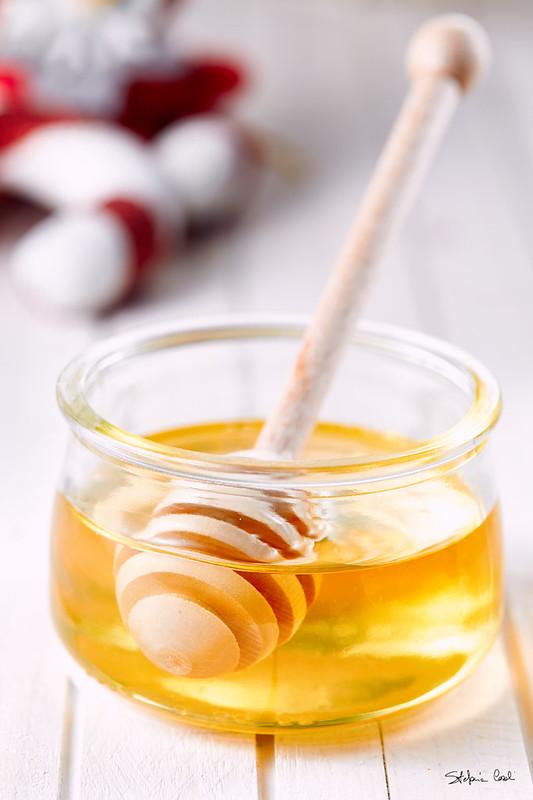 Extrêmement Semifreddo al miele: un'idea per Natale - Lana e Biscotti GF24