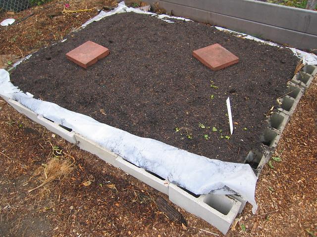 Garden Ideas Using Concrete Blocks - Raised Beds using blocks, plastic and compost.