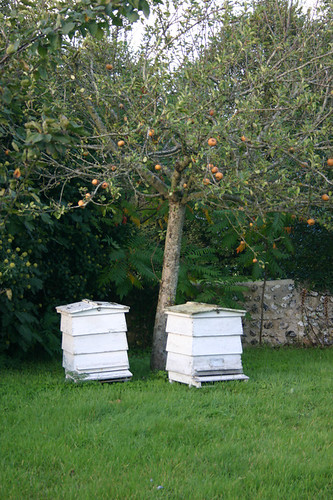 Leonard Woolf 39 S Beehives In The Garden Of Monk 39 S House