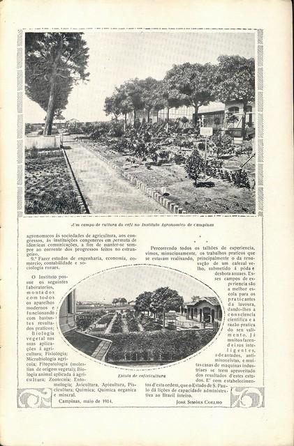 Ilustração Portugueza, No. 465, January 18 1915 - 31