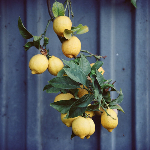 lemons. venice beach, ca. 2007. | by eyetwist
