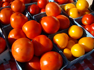 091507tomatoes | by swampkitty