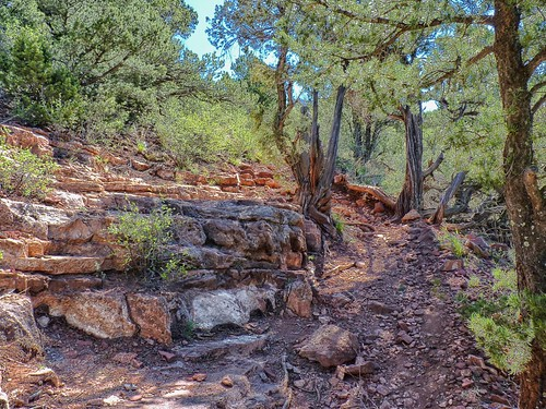 Hiking in Waldo Canyon, Manitou Springs,  Colorado | by wffwii
