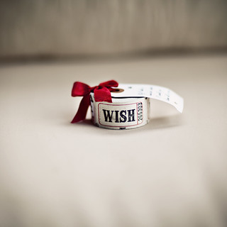 wish | by Shelby Nycole of 927Photography.com