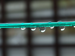 Rain Drop | by John Watters