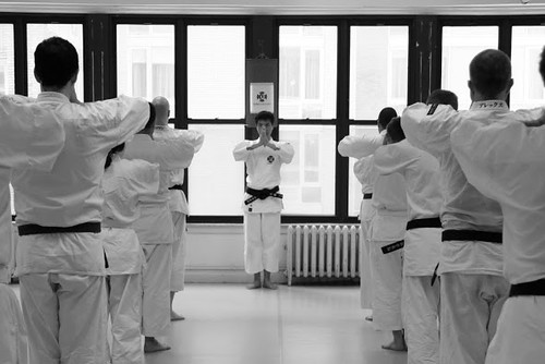 Downtown NY Shorinji Kempo Website Photos
