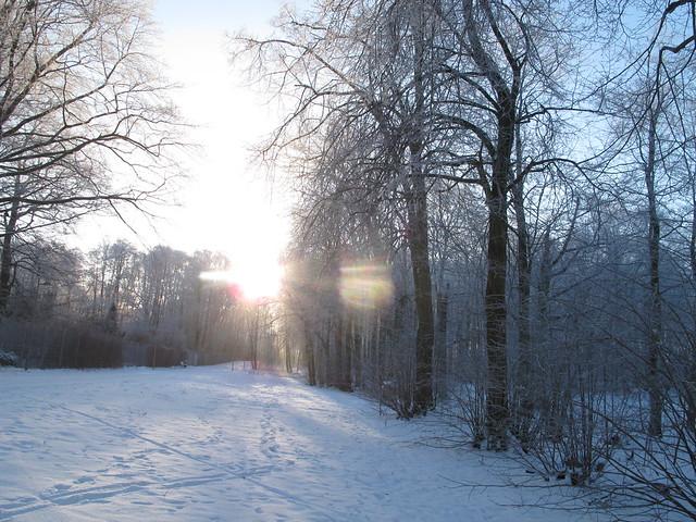 frosty, thursday, helsingborg