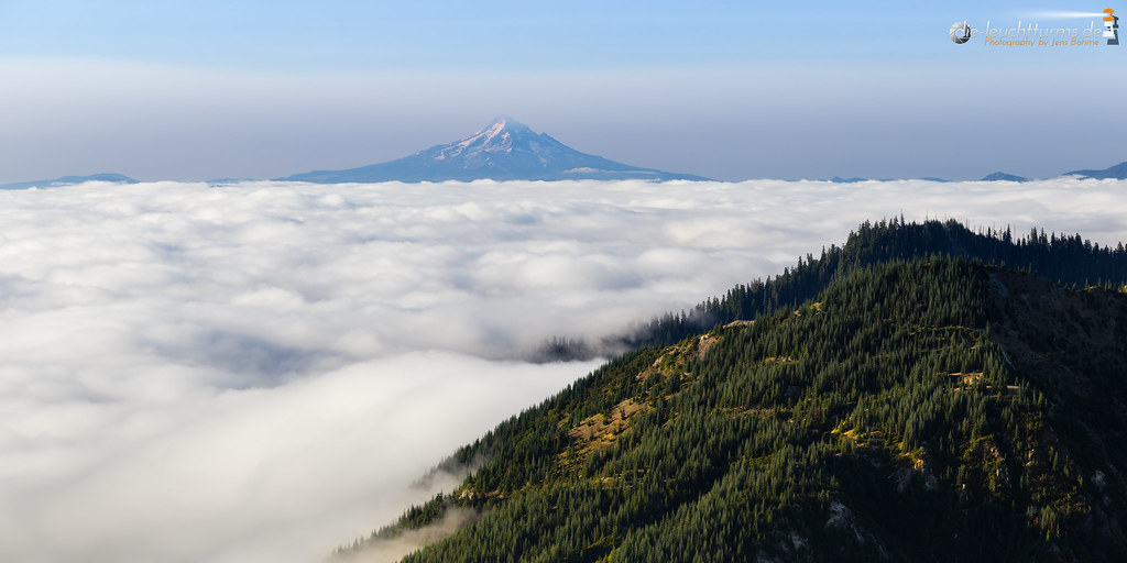 A dense fog settled over the valley
