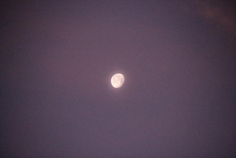 the moon, my girlfriend