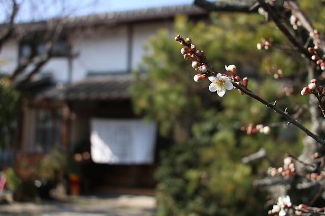 小城鍋島家Tenフォト