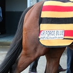 Ballydoyle Gallopers Sunday 20th March 2016