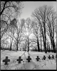 Cmentarz forteczny w Modlinie Twierdzy