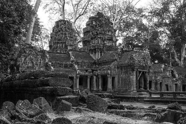 Ta Prohm Temple - Cambodia