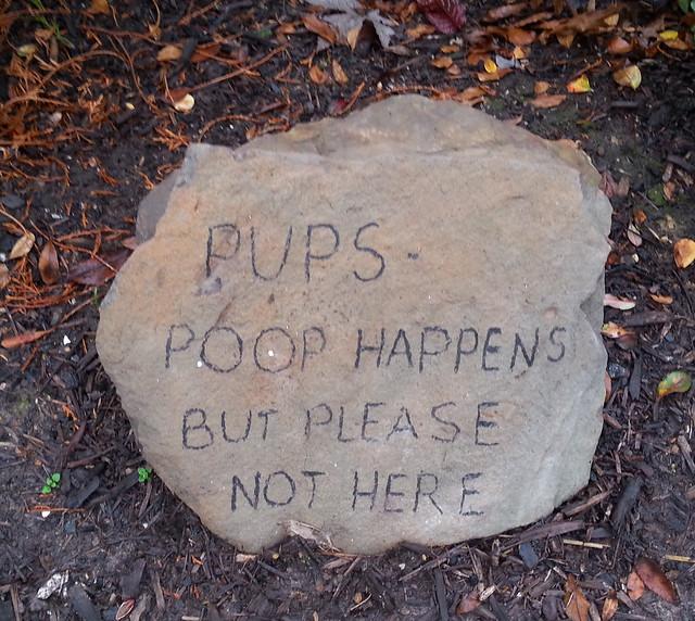 dog-poop-no-2