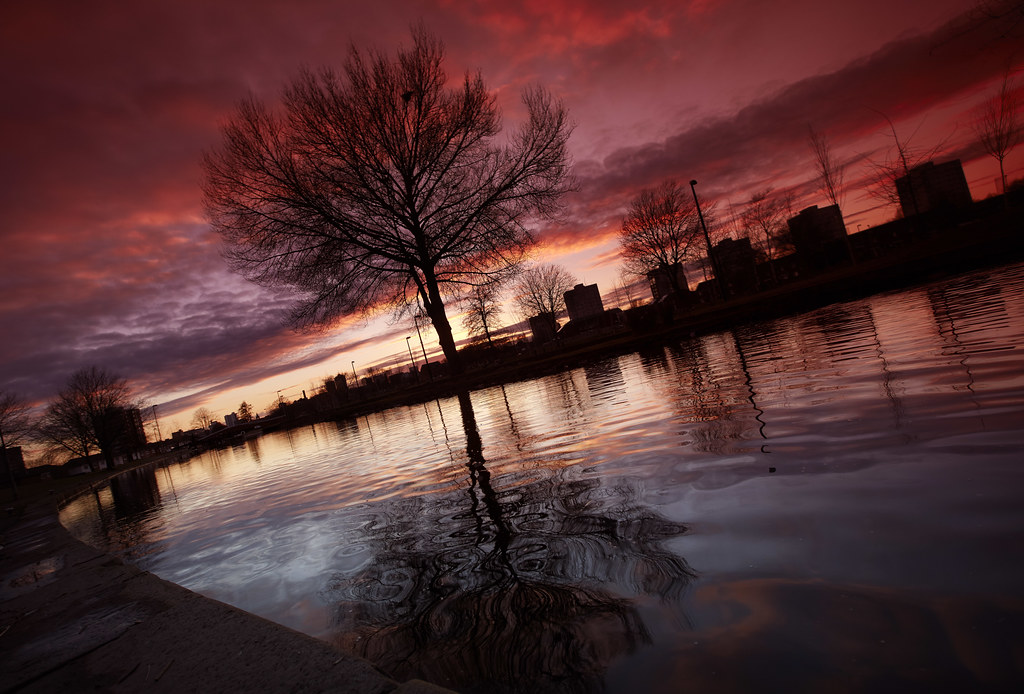Miles Platting Sunset