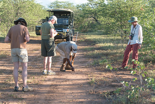 Rhino Tracking mit Guide Rio