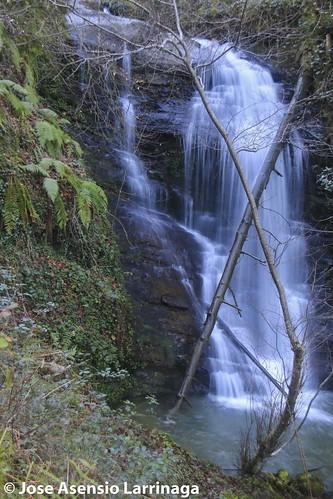 Parque Natural de Gorbeia #Orozko #DePaseoConLarri #Flickr -2940