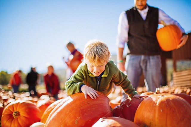 Fall Fun in Virginia's Blue Ridge