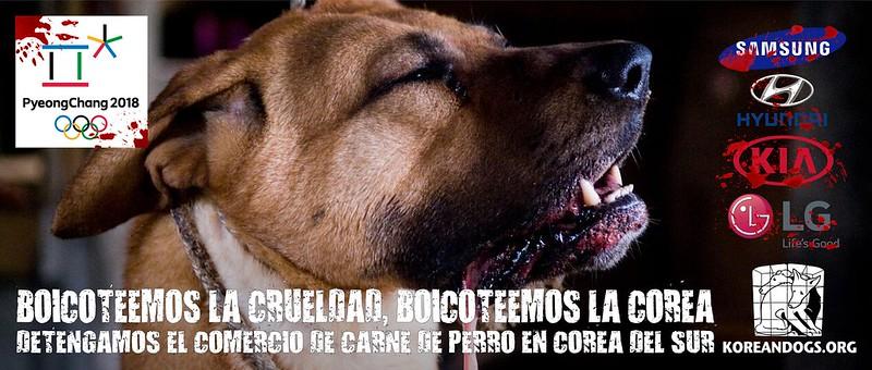 BOICOTEEMOS LA CRUELDAD, BOICOTEEMOS LA COREA (In Spanish)