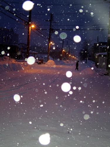 夜明けの雪