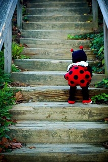 My Little Lady Bug | by Janelle Bradshaw