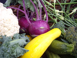 Caulflower, Kale, Purple Kohlrabi, Garlic Scapes, Broccoli and Squashes | by swampkitty