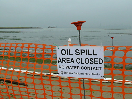 San Francisco Oil Spill - Closed Beaches | by Ingrid Taylar