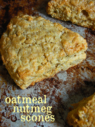 oatmeal nutmeg scones | by awhiskandaspoon