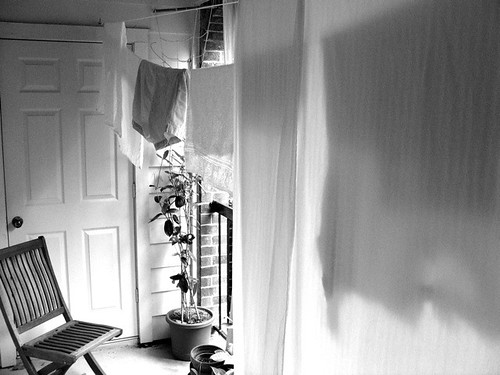 20080423 - Clothesline BW - 3 | by smallnotebook