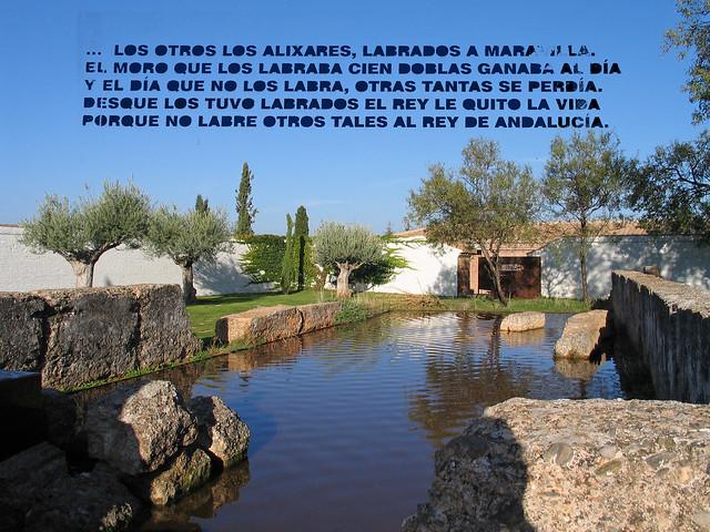 Palacio de los Alixares - البركة