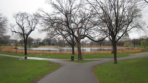 fork in the road, loring park