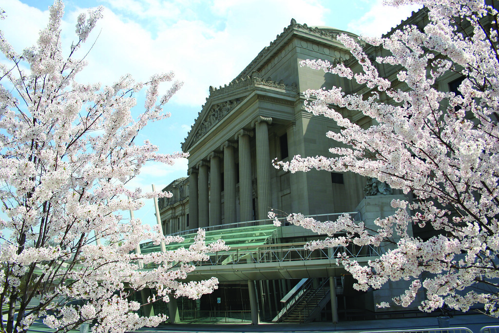 Brooklyn Museum (includes Brooklyn Botanic Garden)