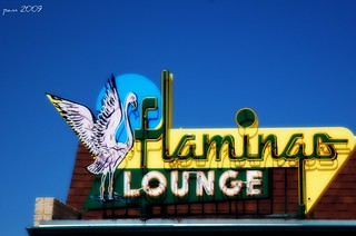 Flamingo Lounge | by pam's pics-
