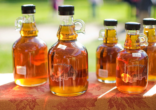 Maple Syrup | by awrose
