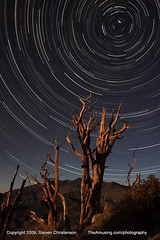 (son of) Bristlecone Pine Star Circle | by Steven Christenson