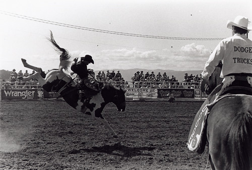 blackmountain rodeo | by blackandwhitemike01