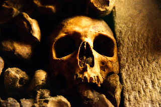 Skull in the Paris Catacombs | by denovich