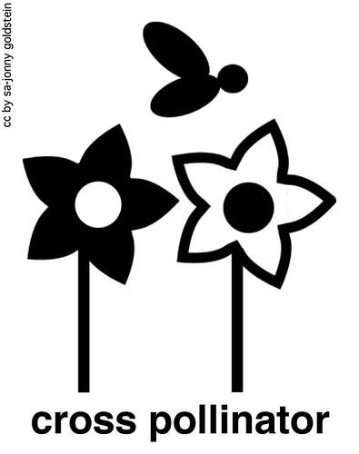 Cross Pollinator (Credits: Jonny Goldstein / FlickR)
