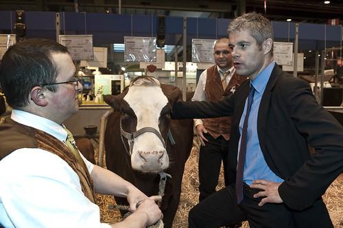Laurent Wauquiez au salon de l'agriculture