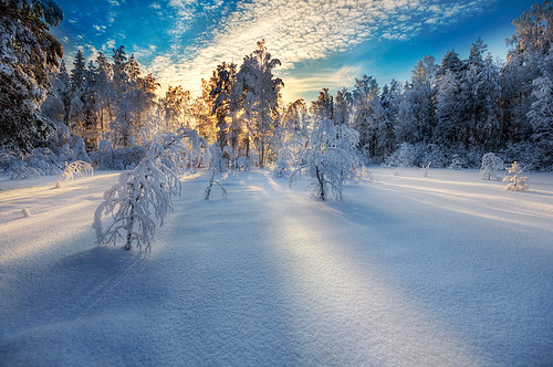 Winter Light | by Mikko Lagerstedt
