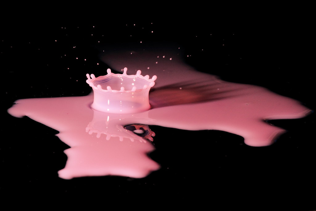 Pink Crown - Explore FP