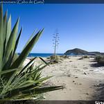 Playa los Genoveses (Cabo de Gata)