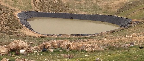 Water harvesting to improve productivity and livelihoods in Tafila