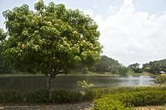 Lago ….la Apartada Cordoba