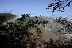 Iguazu Falls National Park in Argentina   - 184