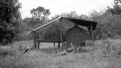 assentamento Monjolo